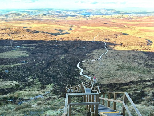 Looking down the steps of the Cuilcagh Mountain Boardwalk and across the expanse of bog and Donegal in the distance