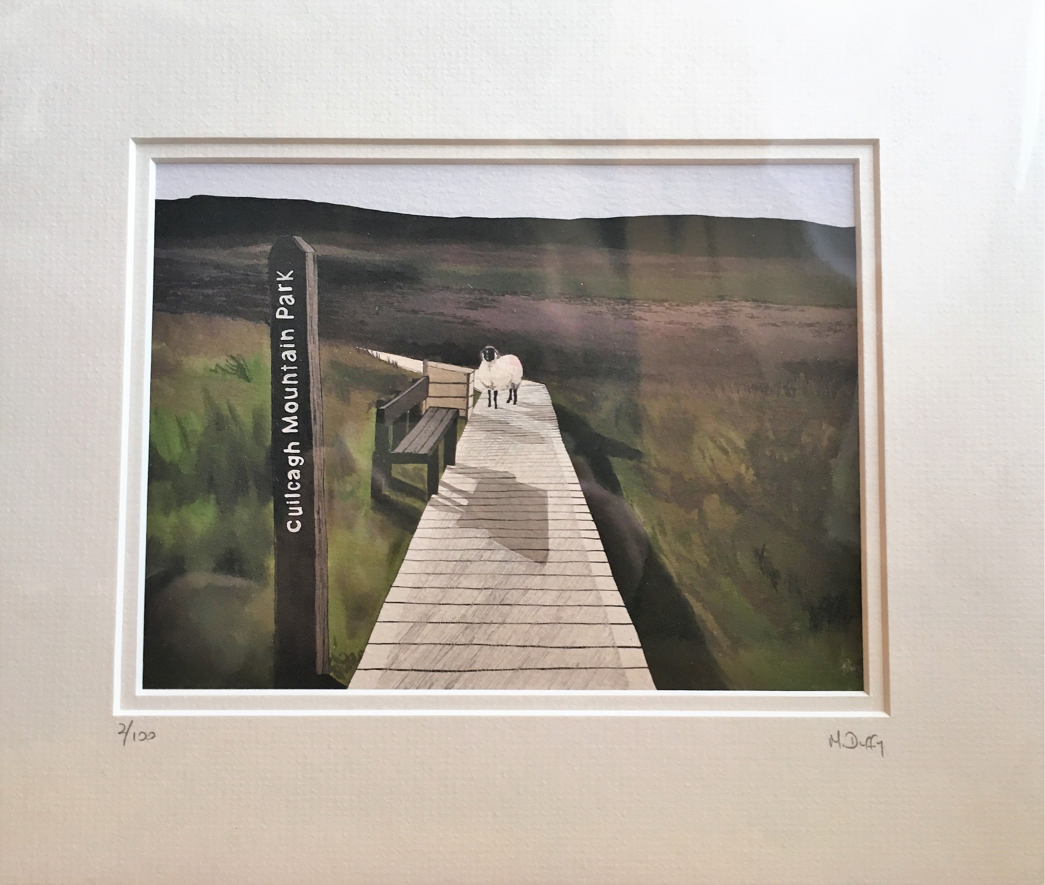 Cuilcagh Mountain Boardwalk, waymarker, bench and sheep. Fine art print by Michelle Duffy