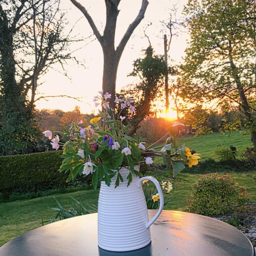 Wildflowers in jug with sunset behind